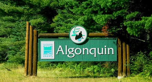Algonquin Park Sign